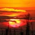 写真: 夕陽(1)