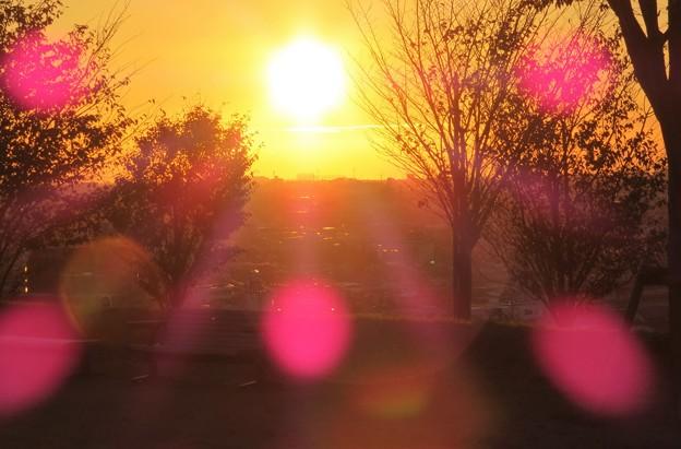 夕陽(4)