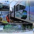 Photos: 江ノ電 ラッピング電車とジオラマなど