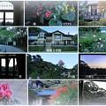 Photos: 鎌倉文学館