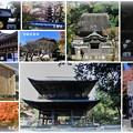 写真: 北鎌倉 円覚寺