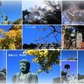 高徳院 鎌倉の大仏