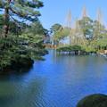 写真: お正月の兼六園 霞ヶ池(蓬莱島と唐崎松)