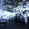 写真: 2008年の兼六園 噴水とツララ