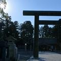 Photos: 護国神社 馬