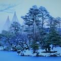 写真: 雪の兼六園 蓬莱島と唐崎松