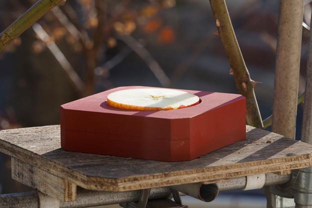 写真: 餌ホルダー設置