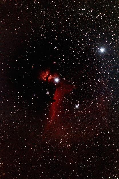 Photos: 馬頭星雲