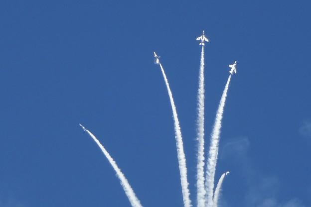 ブルーインパルス アクロバットフライト(入間基地航空祭2016)