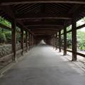 Photos: 吉備津神社 回廊-2