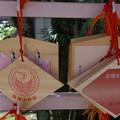 Photos: 猿田彦神社 絵馬