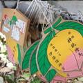 Photos: 伊弉諾神宮 絵馬