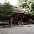 Photos: 石上神宮