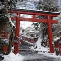 Photos: 冬の其方