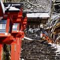Photos: 貴船神社の冬