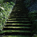 妙法寺の階段