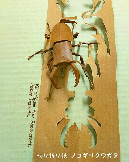 写真: ノコギリクワガタ 切り折り紙