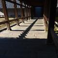 Photos: 静寂(二月堂)