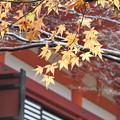 談山神社2016秋 見納め