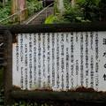 Photos: 箱島湧水の怪-1542