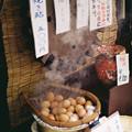 Photos: M6_湯元茶屋-000010