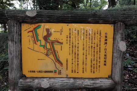 19小田原城_小峯台御鐘ノ台大堀切-1994