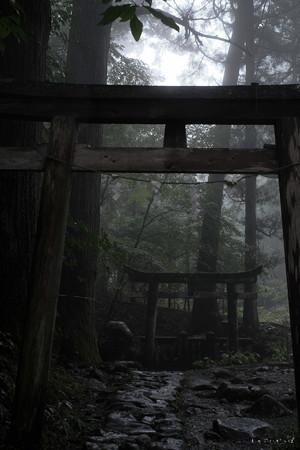 瀧尾神社_22奥の鳥居-6768