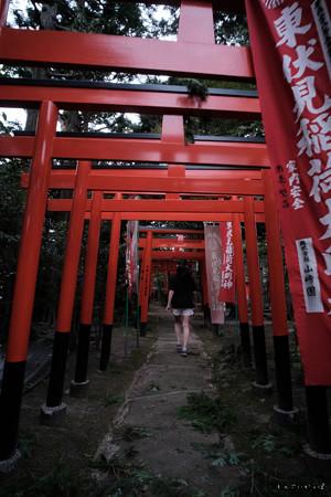 東伏見神社02鳥居-0053