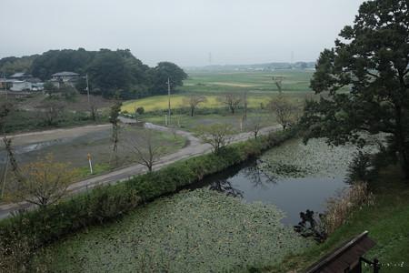 逆井城_18井楼からの眺め-2219