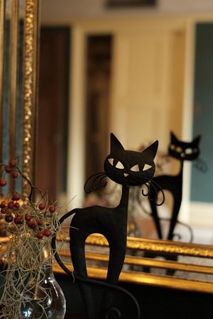 ハロウィン_14ベーリックホール_黒猫-0591