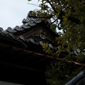 Photos: 10松代_矢沢家_屋根-0695