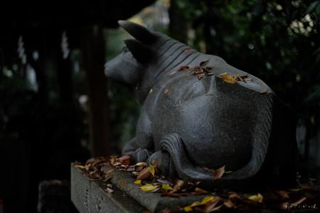 神明神社02_牛-1679