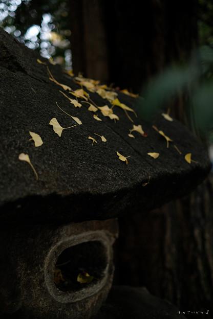 神明神社03_石灯籠-1678