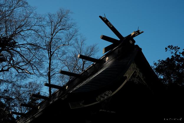 大国魂神社_06拝殿-2006