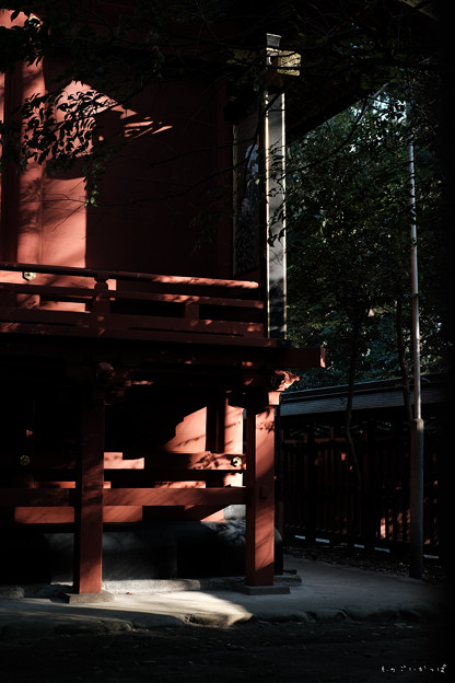 大国魂神社_09丹色-2011