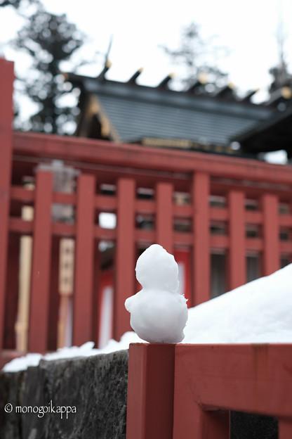 写真: 17雪だるま-3554