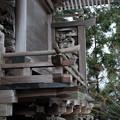 写真: 25_3大口真神社-3569