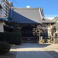 Photos: 東京散歩