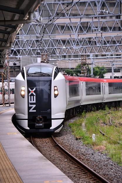 横須賀駅。。横須賀折り返しの成田エキスプレスE259系 20160619