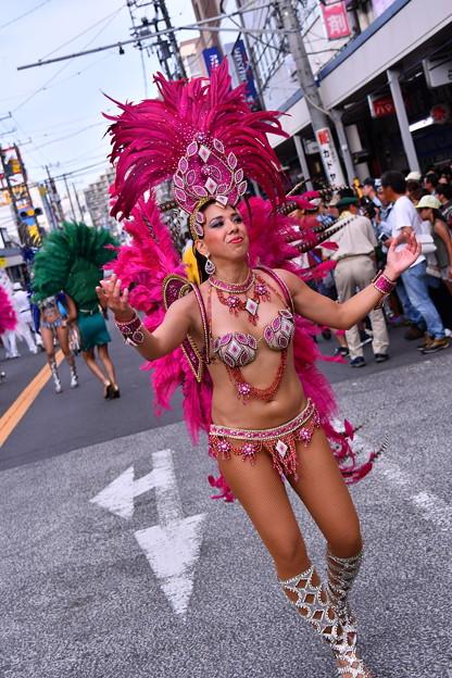 サンバ美女。。綺麗に踊る。。横須賀おっぱま祭り 20160710