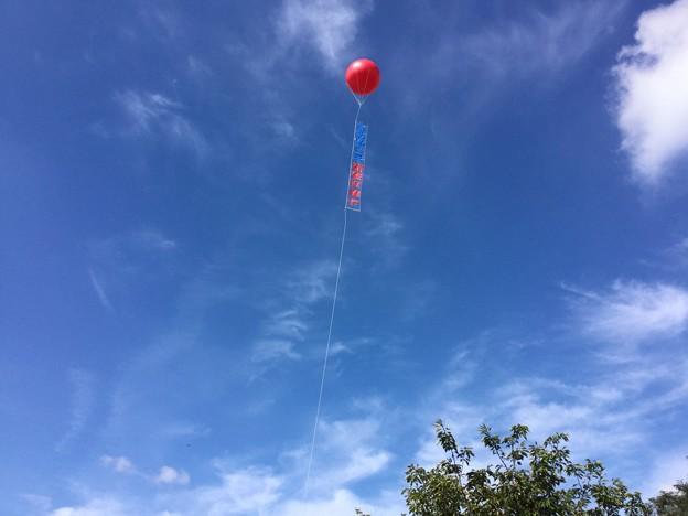 撮って出し。。久しぶりの青い空。。巾着田の空 9月25日