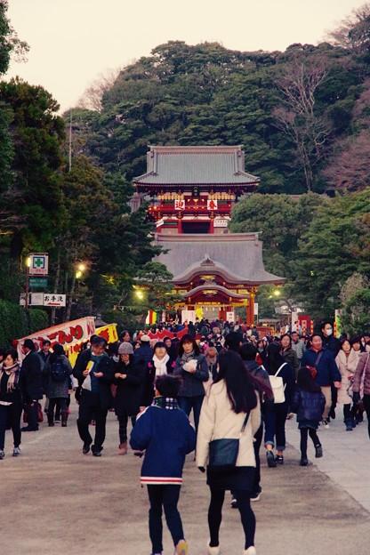 鎌倉鶴岡八幡宮。。三ヶ日以外でも賑わって。。参拝 20170107