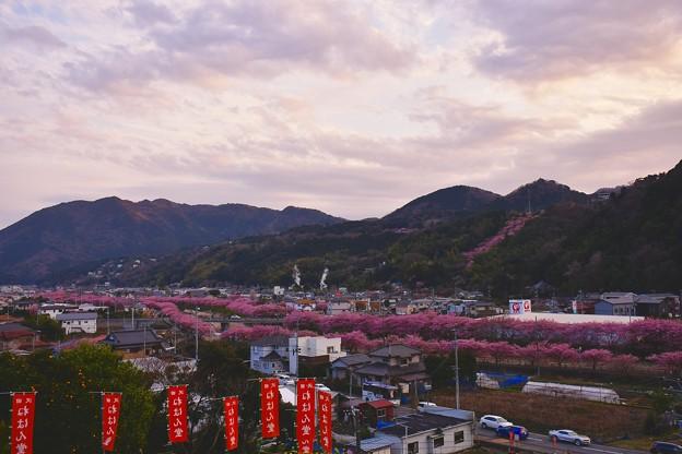 伊豆の沢田ねはん堂から夕暮れの河津町 20170218