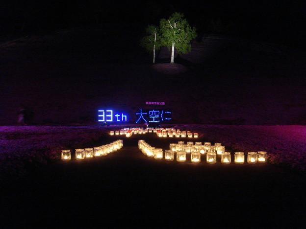 東藻琴芝桜ライトアップ