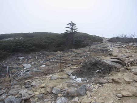 金峰山-20101110-154223