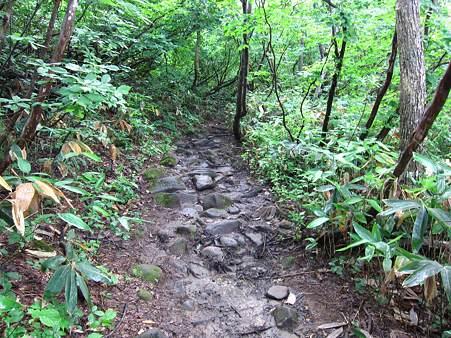 c-110710-070135 登山道の様子