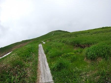 c-110710-112448 木道のある山頂付近