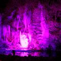 氷柱ライトアップ