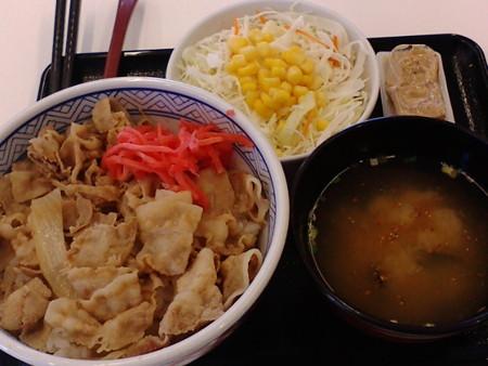 YoshinoyaMoriyamMatukaw04
