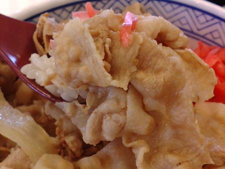 YoshinoyaMoriyamMatukaw07